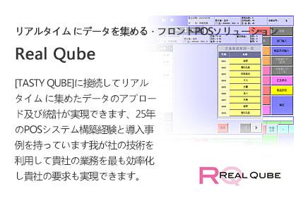 REAL QUBE